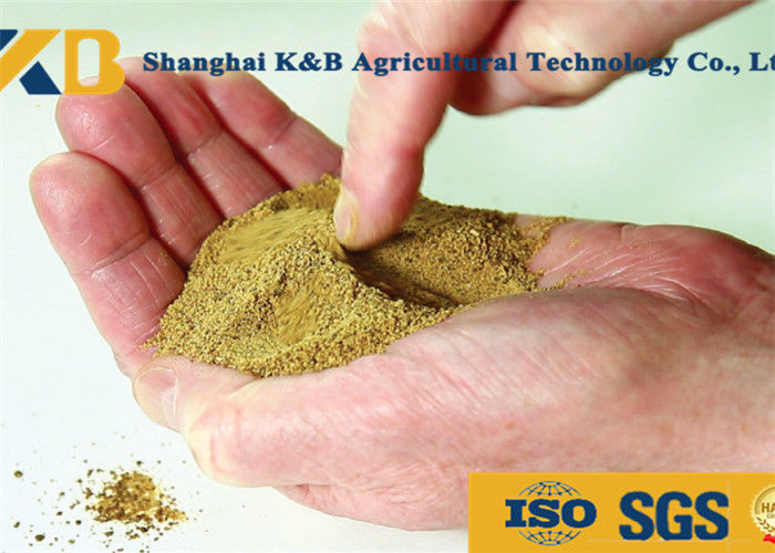 Low Phosphorus Content High Protein Fish Meals for Safe Cargo Transport